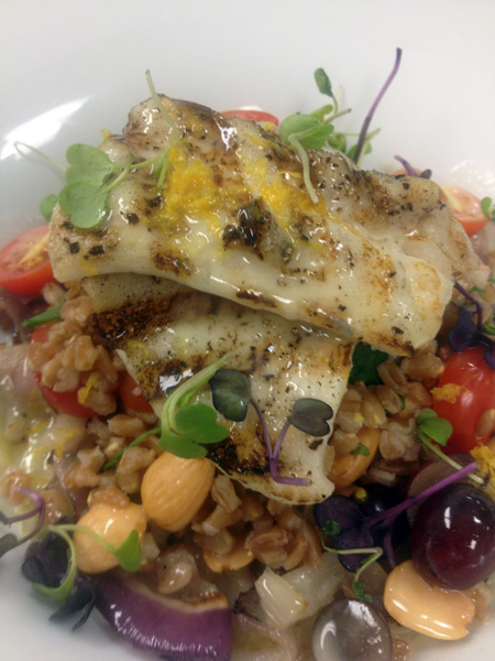 farro-and-halibut